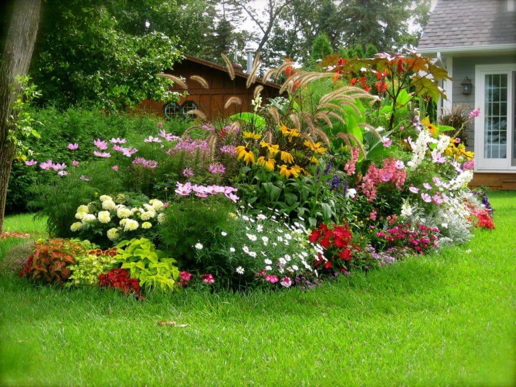 E cigaretter og sol i haven – historien om en dampende livsnyder
