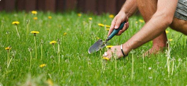 Tilpas haven til jeres families behov