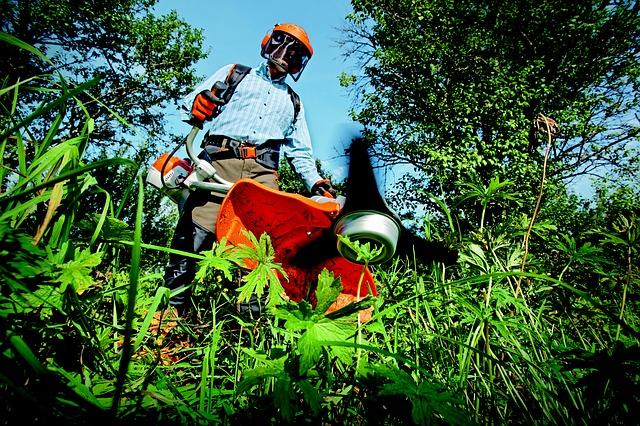 Håndværkerfradrag for almindeligt havearbejde