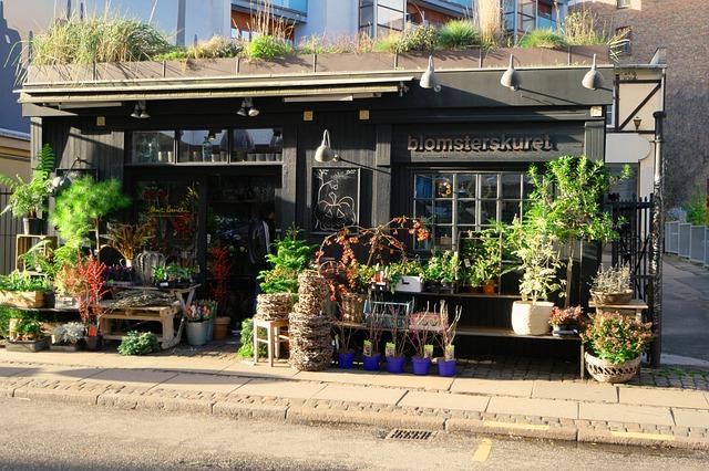 5 tips til at få en have i storbyen