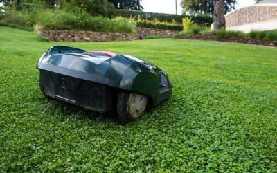 Robotplæneklipperen slår græs, mens du slapper af i skyggen