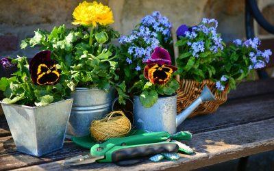 Er din have klar til foråret?