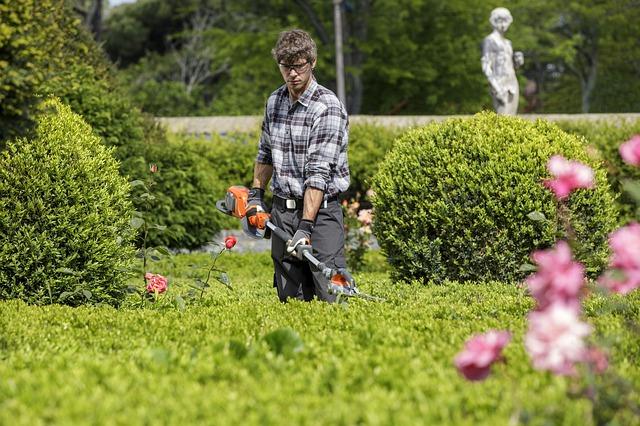 Guide til forårets haveredskaber
