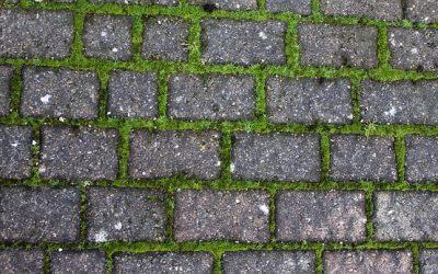 Effektiv græsarmering sikrer vandoptagelsen