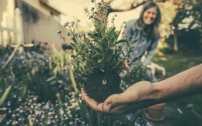Gør din have klar til sommeren