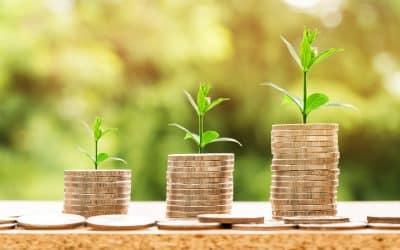 Få råd til mere i haven med smarte investeringer online
