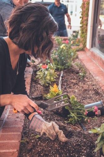 3 tips til indretning af have