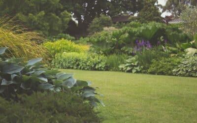 Er du ved at købe bolig med have?