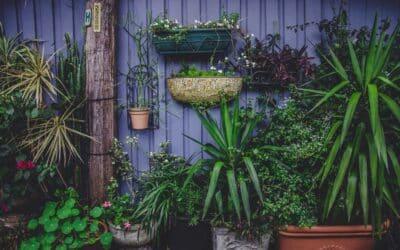 En fryd for øjet med ombygning i haven