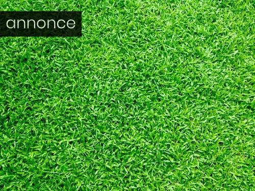 Giv haven nyt liv med en ny græsplæne