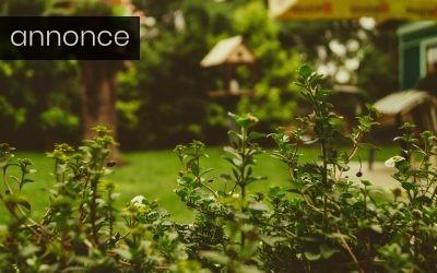 Pift haven op med personlige og finurlige detaljer